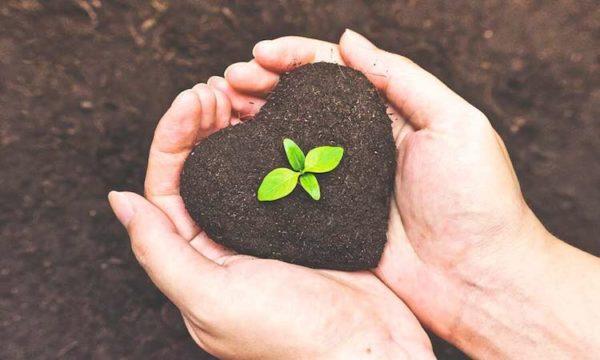 Fertilizzanti per agricoltura bio in calabria