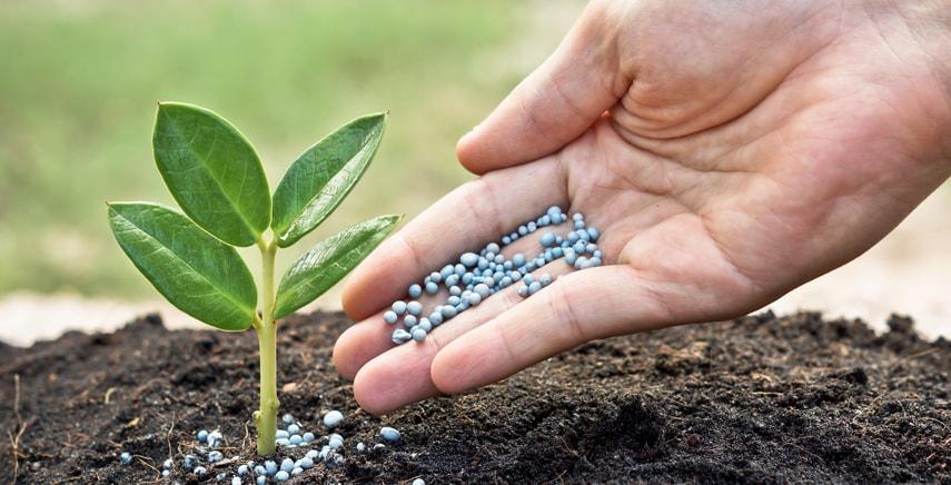 Ingrosso fertilizzanti in Calabria sarcone, forniture